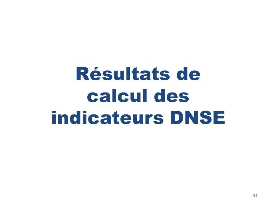 31 Résultats de calcul des indicateurs DNSE
