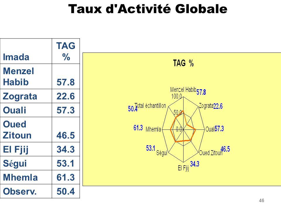 46 Imada TAG % Menzel Habib57.8 Zograta22.6 Ouali57.3 Oued Zitoun46.5 El Fjij34.3 S é gui53.1 Mhemla61.3 Observ.50.4 Taux d'Activité Globale