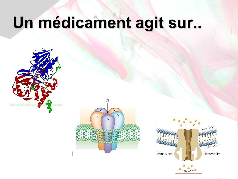 Jean-Louis Brazier - 200924 Phencyclidine (PCP) CYP3A4 CYP2C11