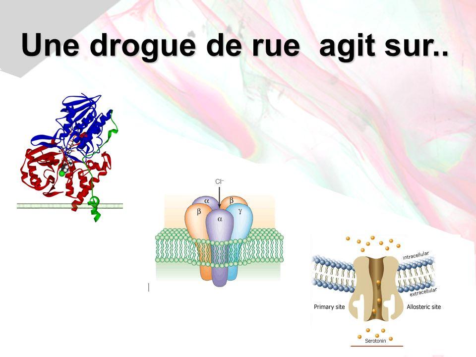 Jean-Louis Brazier - 200965 Cocaïne: mode daction Bloque la recapture de Sérotonine Dopamine Noradrénaline