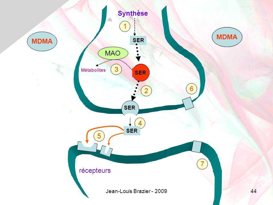 Jean-Louis Brazier - 200944 SER MAO SER Métabolites Synthèse récepteurs 1 2 3 4 5 7 6 SER MDMA SER