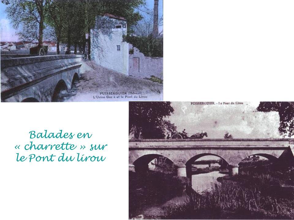 Balades en « charrette » sur le Pont du lirou
