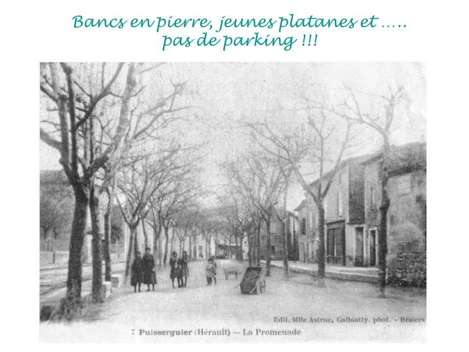 Bancs en pierre, jeunes platanes et ….. pas de parking !!!