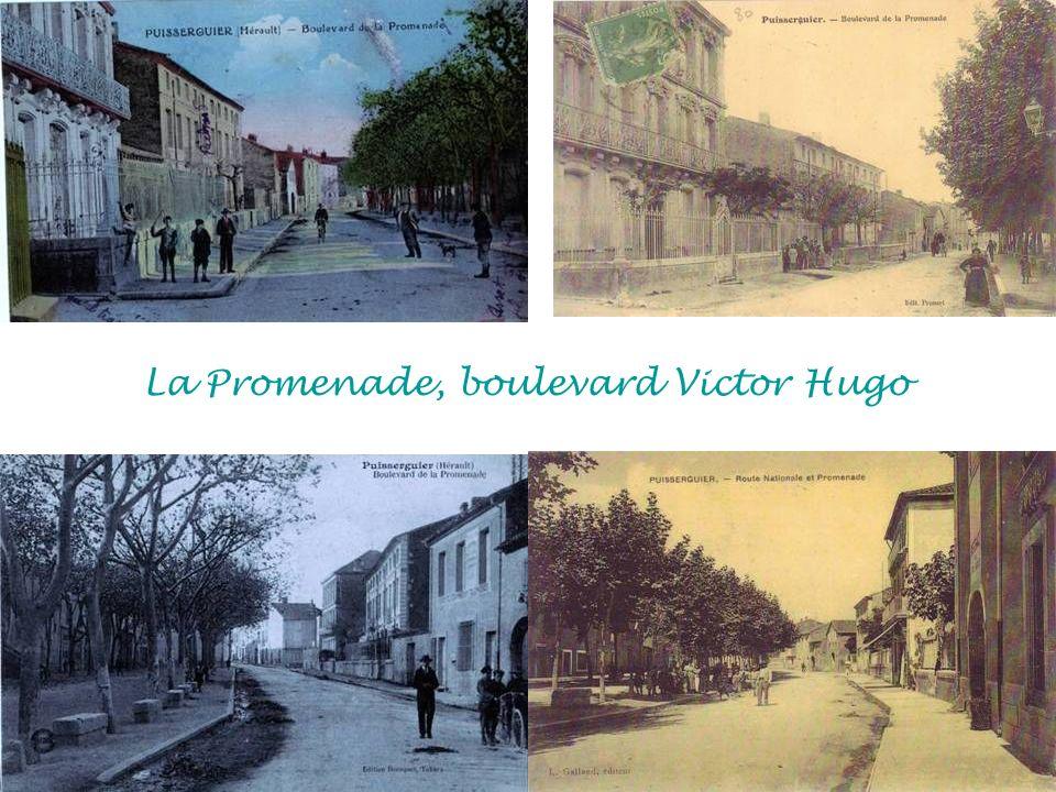 La Promenade, boulevard Victor Hugo