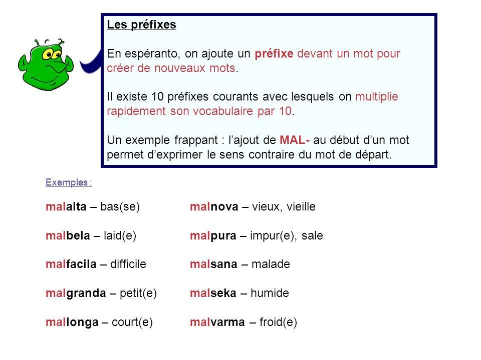 Les préfixes En espéranto, on ajoute un préfixe devant un mot pour créer de nouveaux mots. Il existe 10 préfixes courants avec lesquels on multiplie r