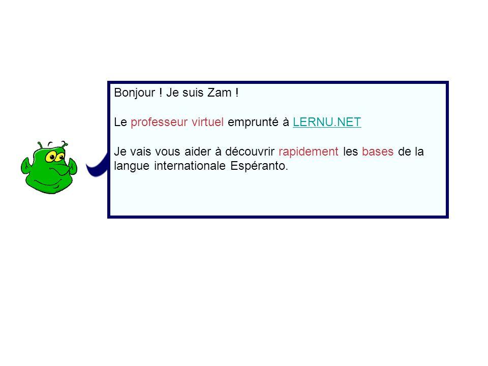 Bonjour ! Je suis Zam ! Le professeur virtuel emprunté à LERNU.NETLERNU.NET Je vais vous aider à découvrir rapidement les bases de la langue internati
