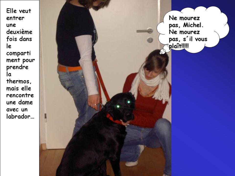 Elle veut entrer une deuxième fois dans le comparti ment pour prendre la thermos, mais elle rencontre une dame avec un labrador… Ne mourez pas, Michel