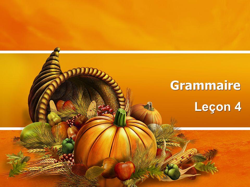 Grammaire Leçon 4