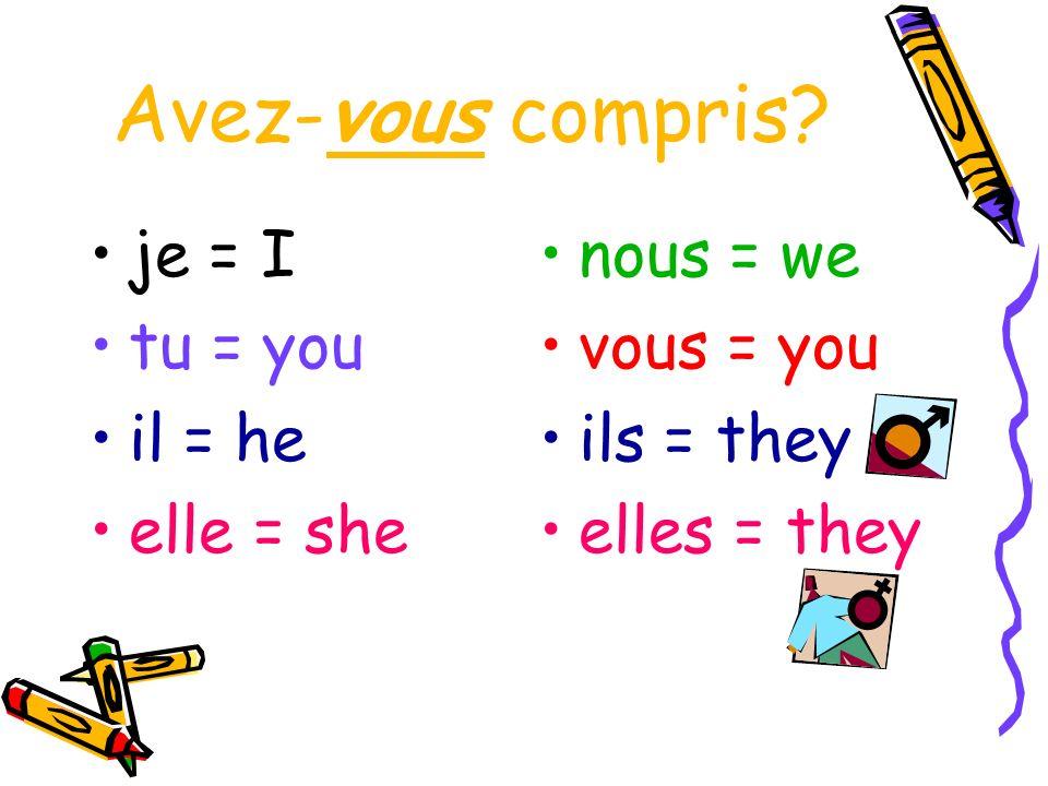 Avez-vous compris? je = I tu = you il = he elle = she nous = we vous = you ils = they elles = they