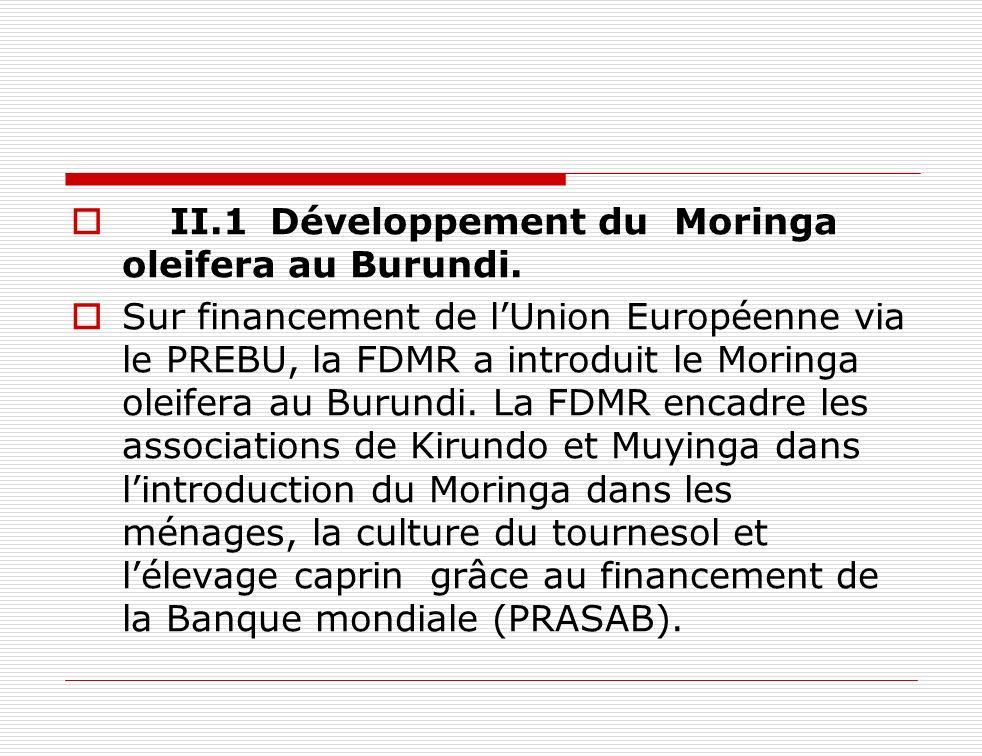 II.1Développement du Moringa oleifera au Burundi. Sur financement de lUnion Européenne via le PREBU, la FDMR a introduit le Moringa oleifera au Burund