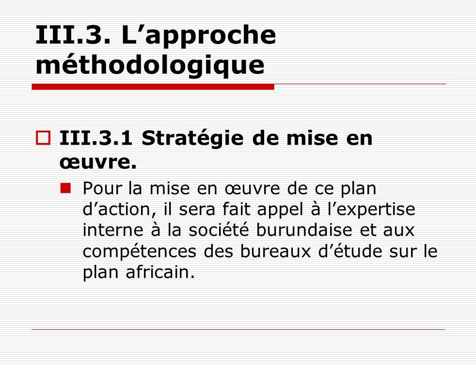 III.3. Lapproche méthodologique III.3.1 Stratégie de mise en œuvre. Pour la mise en œuvre de ce plan daction, il sera fait appel à lexpertise interne