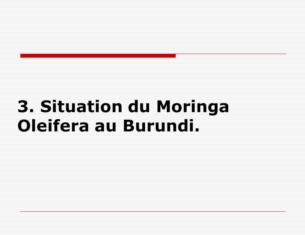 3. Situation du Moringa Oleifera au Burundi.