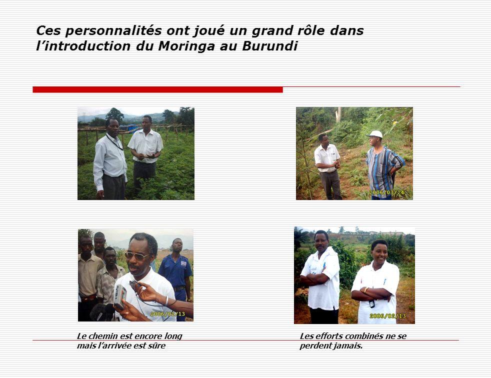 Ces personnalités ont joué un grand rôle dans lintroduction du Moringa au Burundi Les efforts combinés ne se perdent jamais. Le chemin est encore long