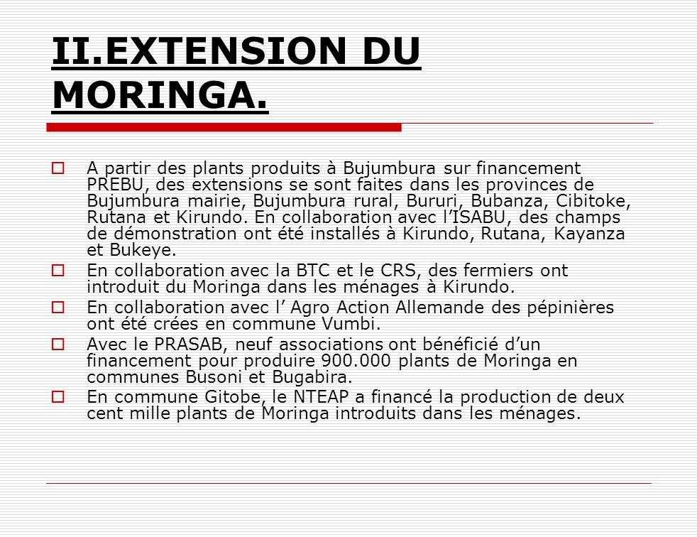 II.EXTENSION DU MORINGA. A partir des plants produits à Bujumbura sur financement PREBU, des extensions se sont faites dans les provinces de Bujumbura