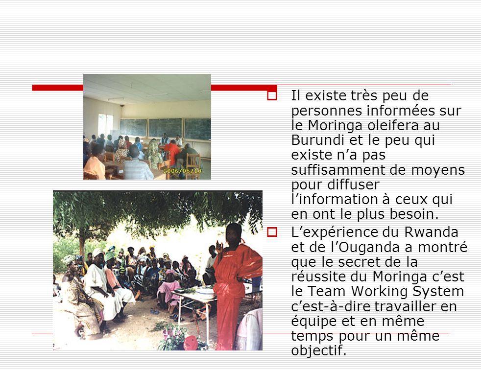 Il existe très peu de personnes informées sur le Moringa oleifera au Burundi et le peu qui existe na pas suffisamment de moyens pour diffuser linforma