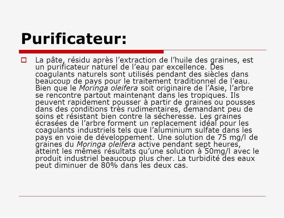 Purificateur: La pâte, résidu après lextraction de lhuile des graines, est un purificateur naturel de leau par excellence. Des coagulants naturels son