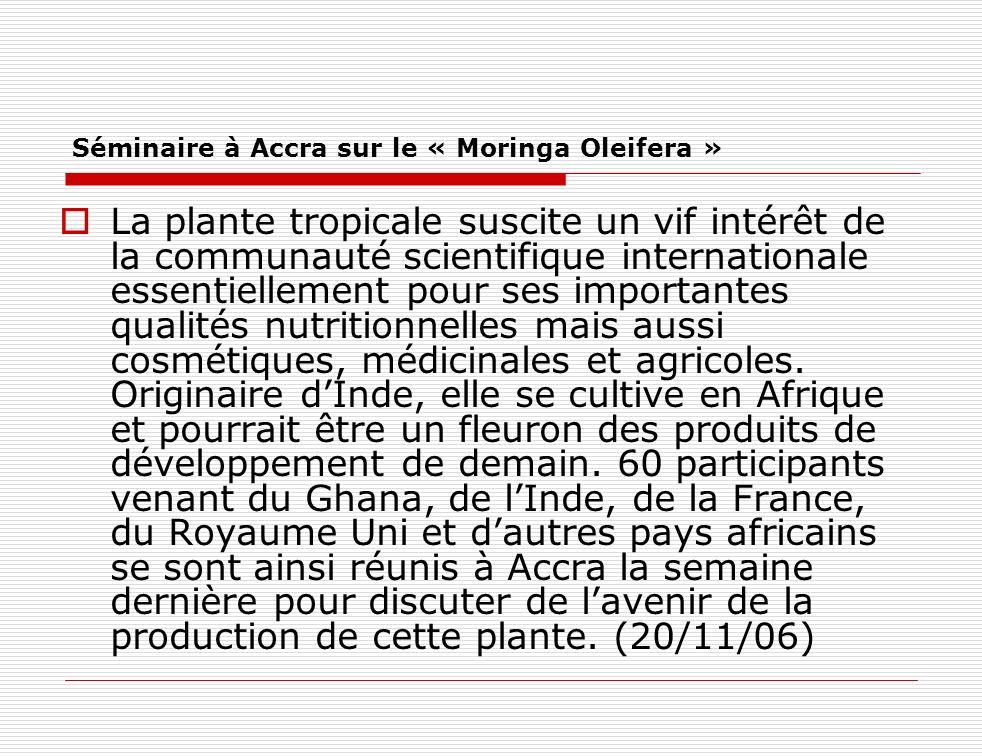 Séminaire à Accra sur le « Moringa Oleifera » La plante tropicale suscite un vif intérêt de la communauté scientifique internationale essentiellement