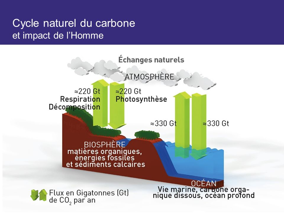 Cycle naturel du carbone et impact de lHomme