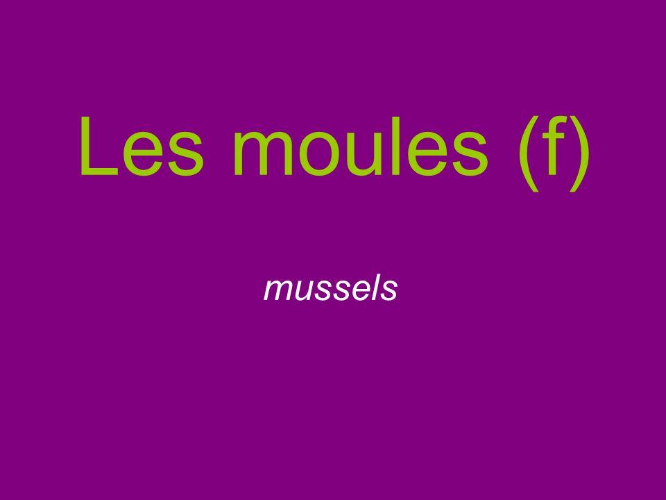 Les moules (f) mussels