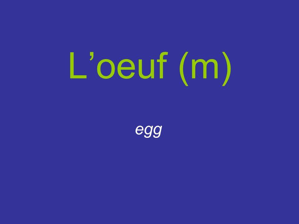 Loeuf (m) egg