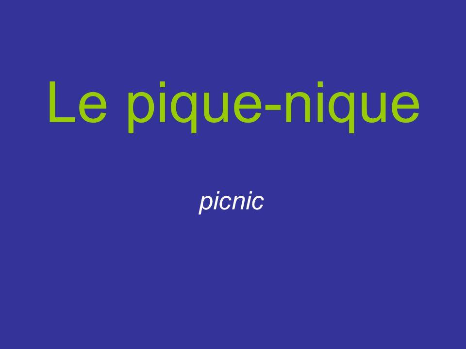 Le pique-nique picnic