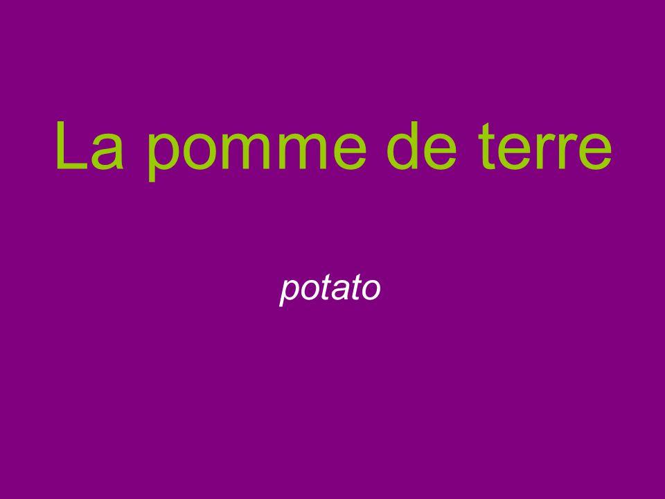 La pomme de terre potato