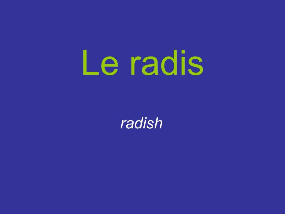 Le radis radish