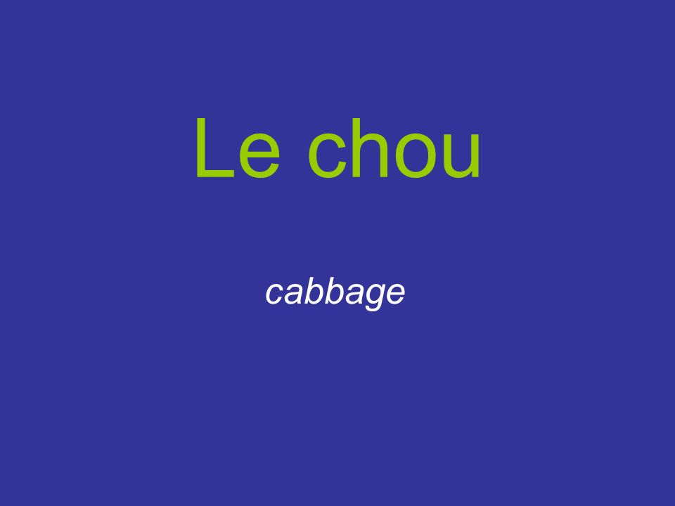 Le chou cabbage