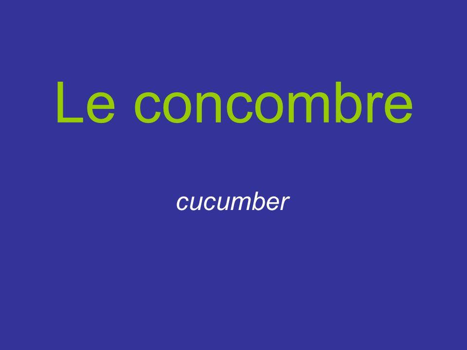 Le concombre cucumber