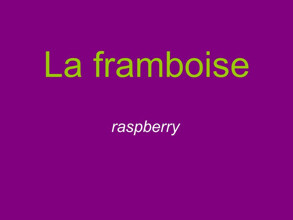 La framboise raspberry
