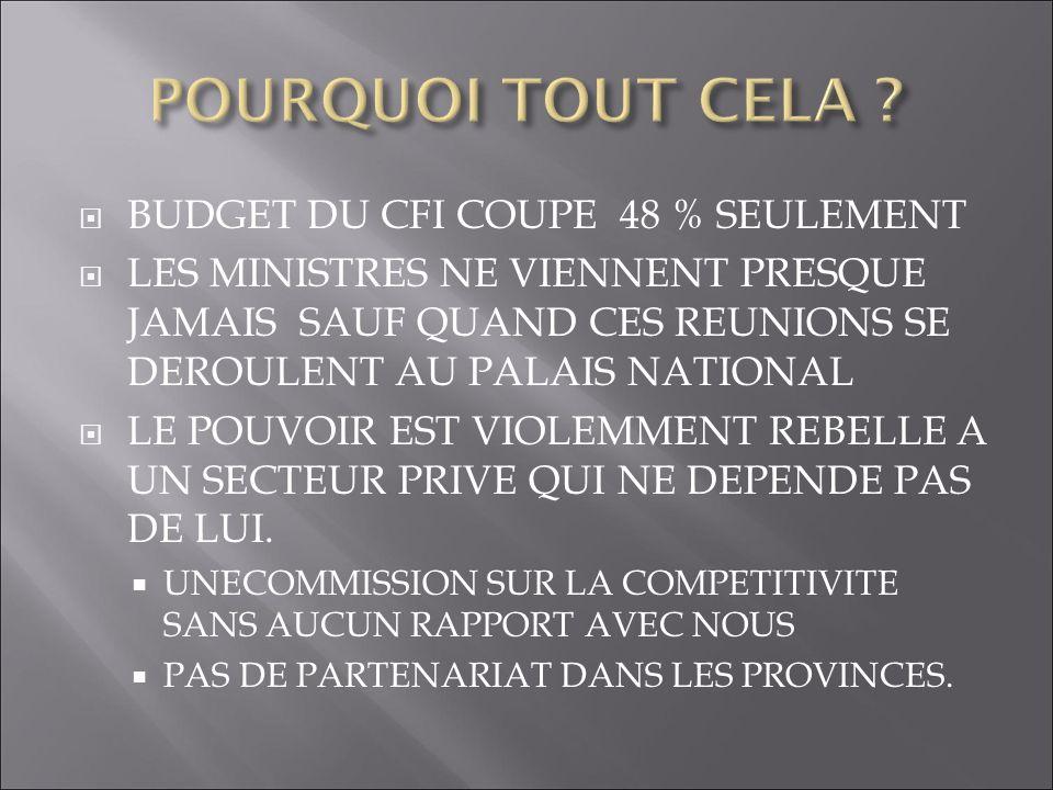 BUDGET DU CFI COUPE 48 % SEULEMENT LES MINISTRES NE VIENNENT PRESQUE JAMAIS SAUF QUAND CES REUNIONS SE DEROULENT AU PALAIS NATIONAL LE POUVOIR EST VIO