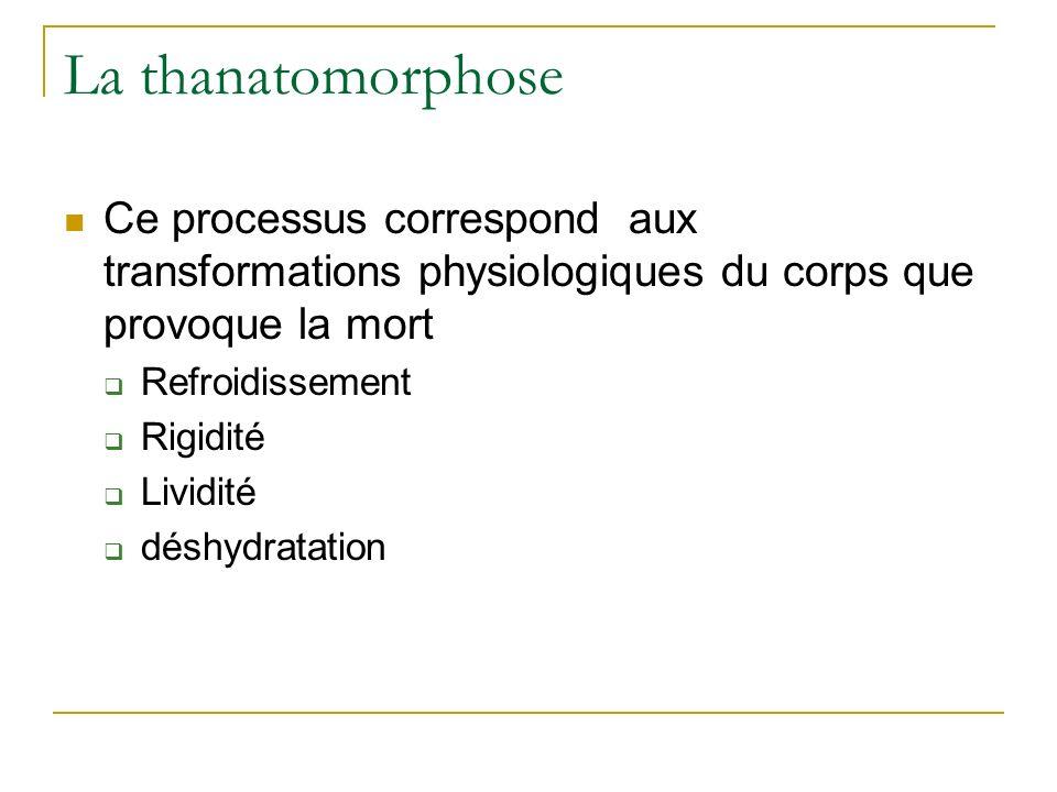 La thanatomorphose Ce processus correspond aux transformations physiologiques du corps que provoque la mort Refroidissement Rigidité Lividité déshydratation