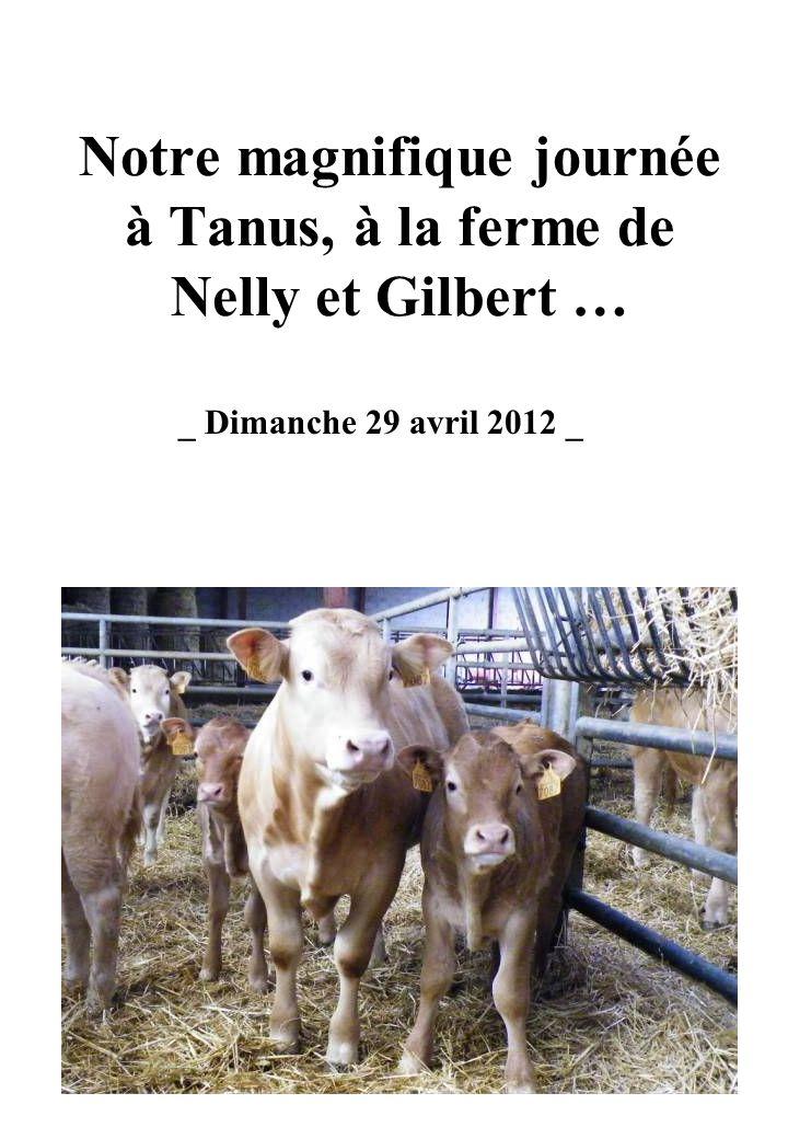Notre magnifique journée à Tanus, à la ferme de Nelly et Gilbert … _ Dimanche 29 avril 2012 _