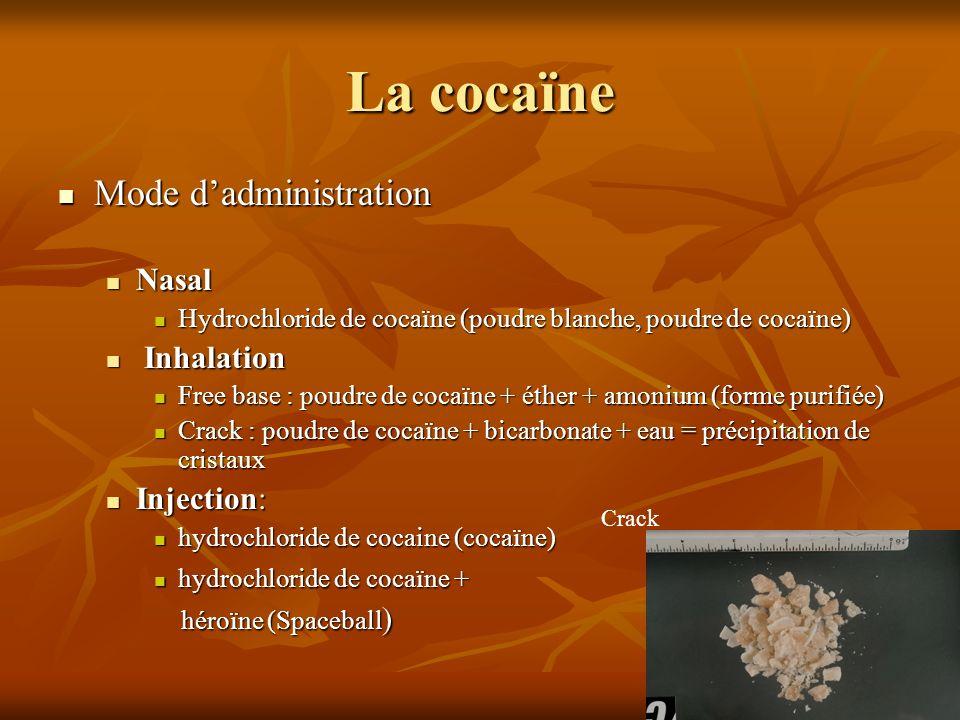 La cocaïne Mode dadministration Mode dadministration Nasal Nasal Hydrochloride de cocaïne (poudre blanche, poudre de cocaïne) Hydrochloride de cocaïne