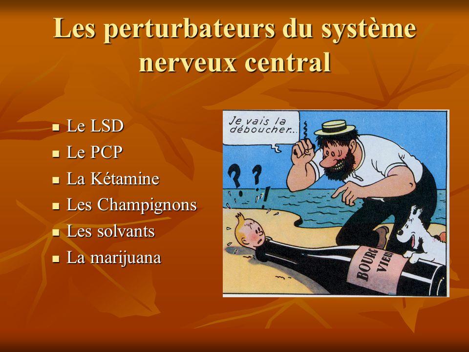 Les perturbateurs du système nerveux central Le LSD Le LSD Le PCP Le PCP La Kétamine La Kétamine Les Champignons Les Champignons Les solvants Les solv