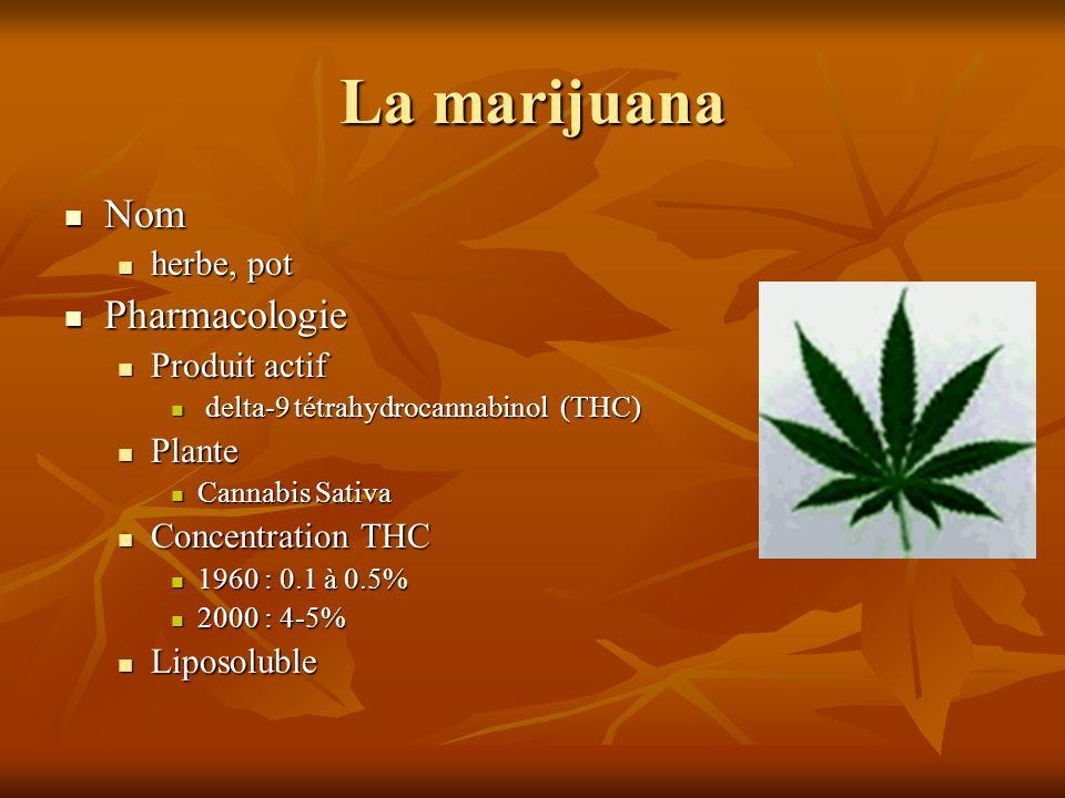 La marijuana Nom Nom herbe, pot herbe, pot Pharmacologie Pharmacologie Produit actif Produit actif delta-9 tétrahydrocannabinol (THC) delta-9 tétrahyd