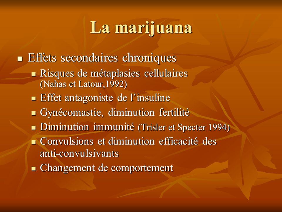 La marijuana Effets secondaires chroniques Effets secondaires chroniques Risques de métaplasies cellulaires (Nahas et Latour,1992) Risques de métaplas