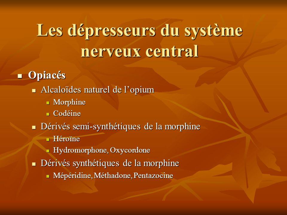 Les dépresseurs du système nerveux central Opiacés Opiacés Alcaloïdes naturel de lopium Alcaloïdes naturel de lopium Morphine Morphine Codéine Codéine