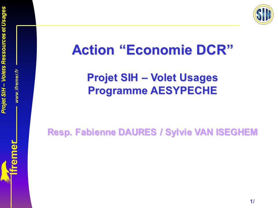 Projet SIH – Volets Ressources et Usages 1/ Action Economie DCR Projet SIH – Volet Usages Programme AESYPECHE Resp.