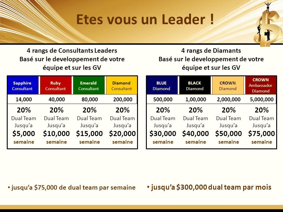 jusqua $75,000 de dual team par semaine jusqua $300,000 dual team par mois Etes vous un Leader ! 4 rangs de Consultants Leaders Basé sur le developpem