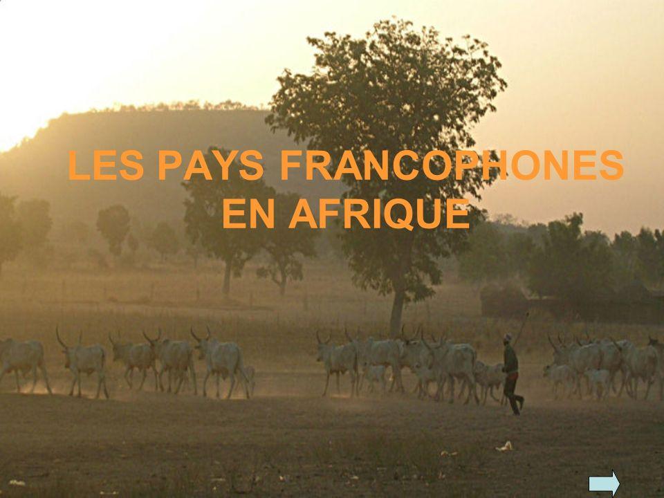 LES PAYS FRANCOPHONES EN AFRIQUE