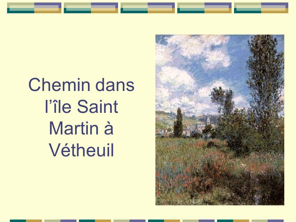 Chemin dans lîle Saint Martin à Vétheuil