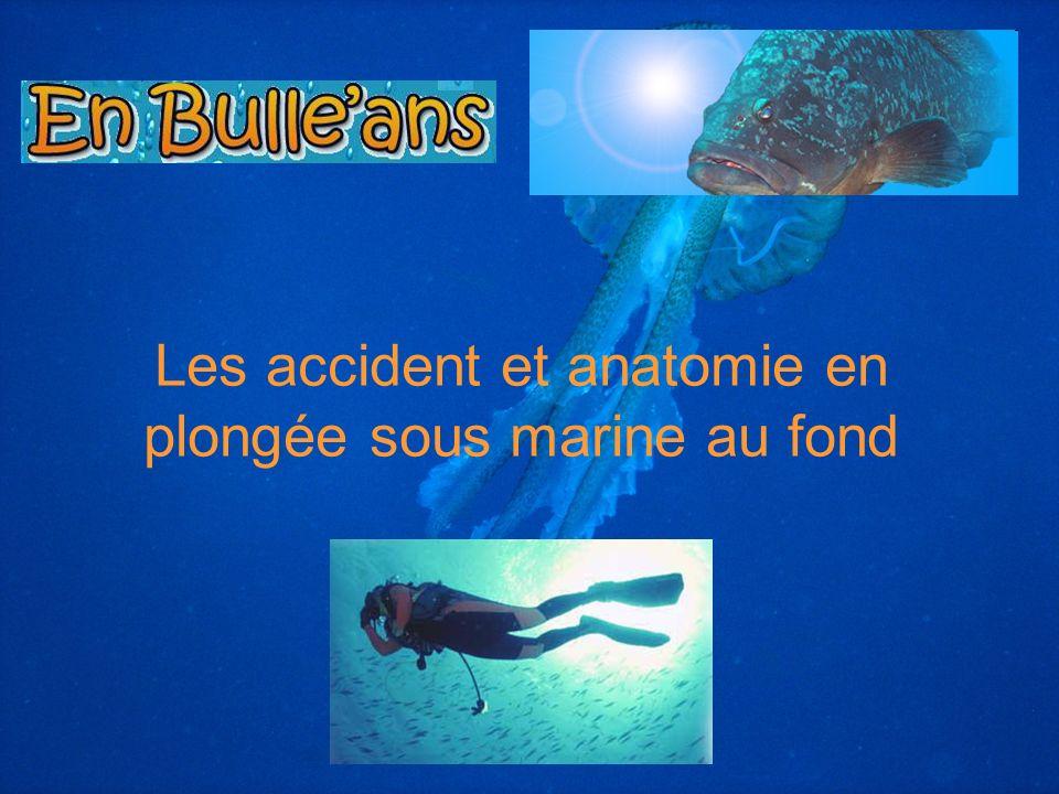 Les accident et anatomie en plongée sous marine au fond