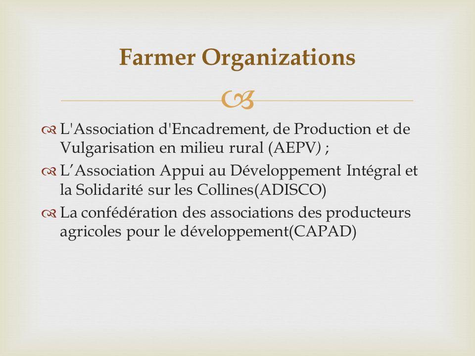L Association d Encadrement, de Production et de Vulgarisation en milieu rural (AEPV ) ; LAssociation Appui au Développement Intégral et la Solidarité sur les Collines(ADISCO) La confédération des associations des producteurs agricoles pour le développement(CAPAD) Farmer Organizations