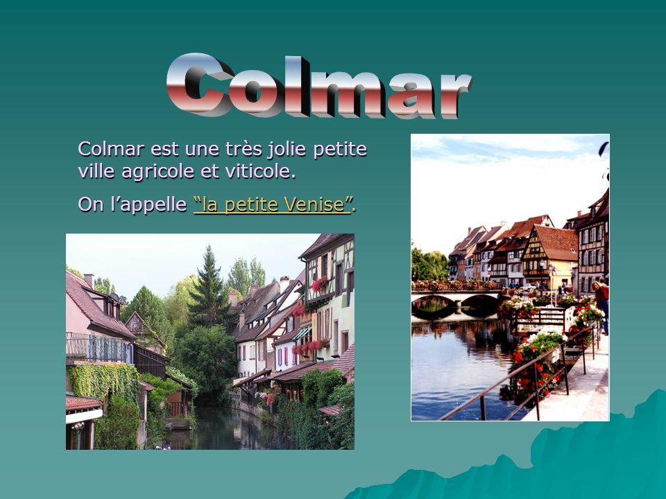 Colmar est une très jolie petite ville agricole et viticole. On lappelle la petite Venise.
