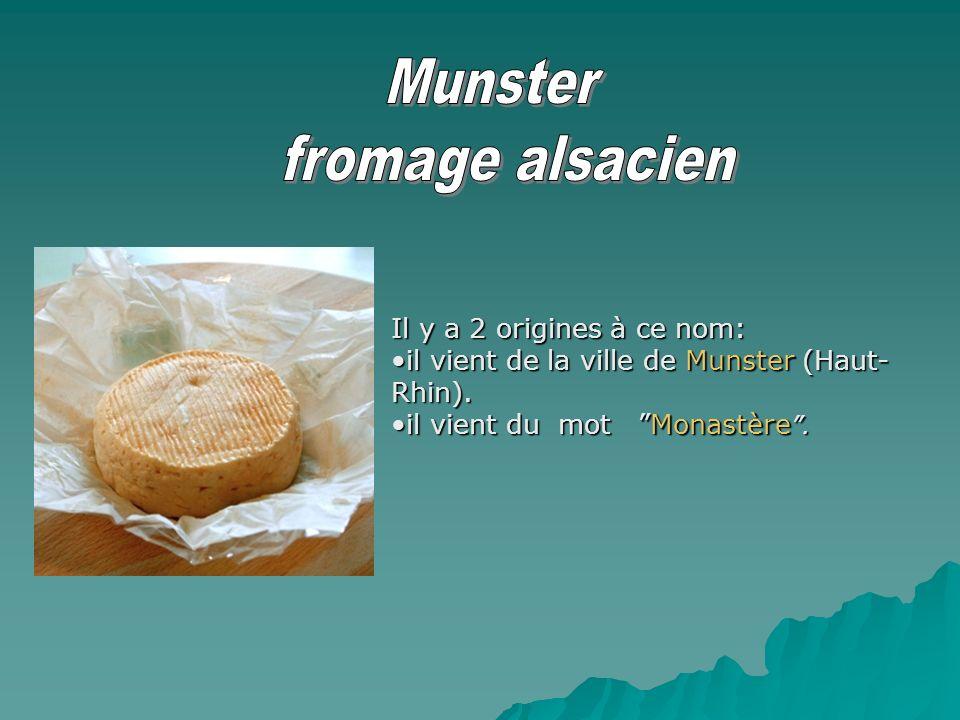 Il y a 2 origines à ce nom: il vient de la ville de Munster (Haut- Rhin).il vient de la ville de Munster (Haut- Rhin). il vient du mot Monastère.il vi