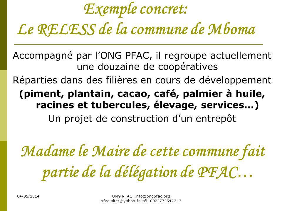 04/05/2014ONG PFAC; info@ongpfac.org pfac.alter@yahoo.fr tél. 0023775547243 Exemple concret: Le RELESS de la commune de Mboma Accompagné par lONG PFAC