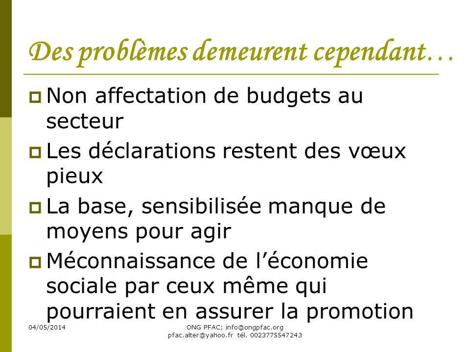 04/05/2014ONG PFAC; info@ongpfac.org pfac.alter@yahoo.fr tél. 0023775547243 Des problèmes demeurent cependant… Non affectation de budgets au secteur L