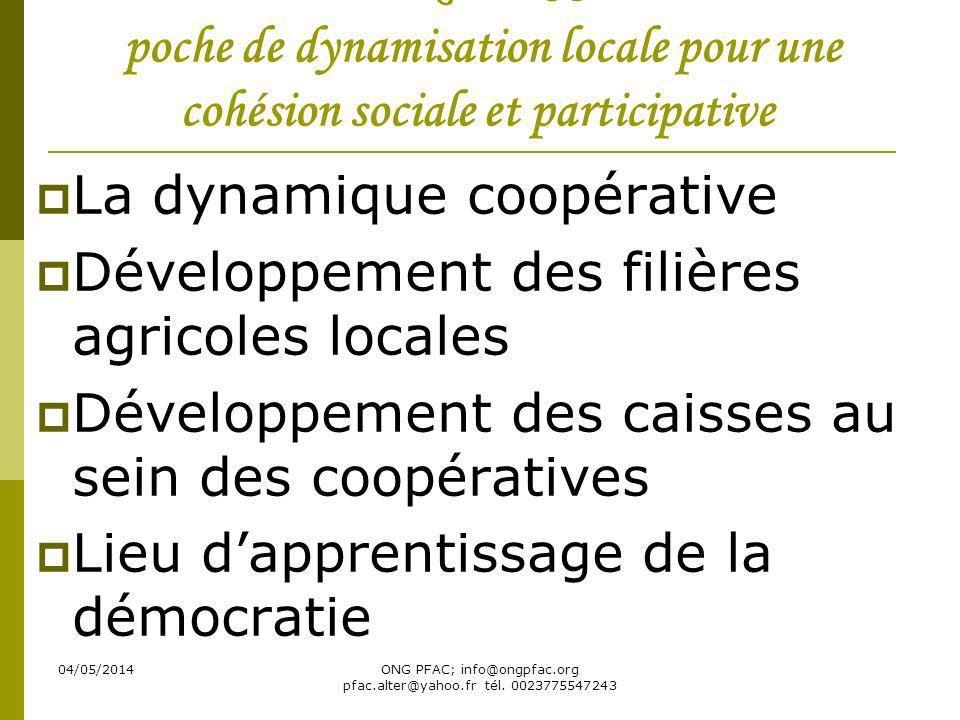 04/05/2014ONG PFAC; info@ongpfac.org pfac.alter@yahoo.fr tél. 0023775547243 Le RELESS: poche de dynamisation locale pour une cohésion sociale et parti