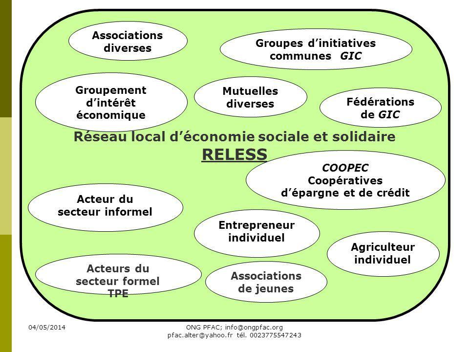 04/05/2014ONG PFAC; info@ongpfac.org pfac.alter@yahoo.fr tél. 0023775547243 Réseau local déconomie sociale et solidaire RELESS Associations diverses G